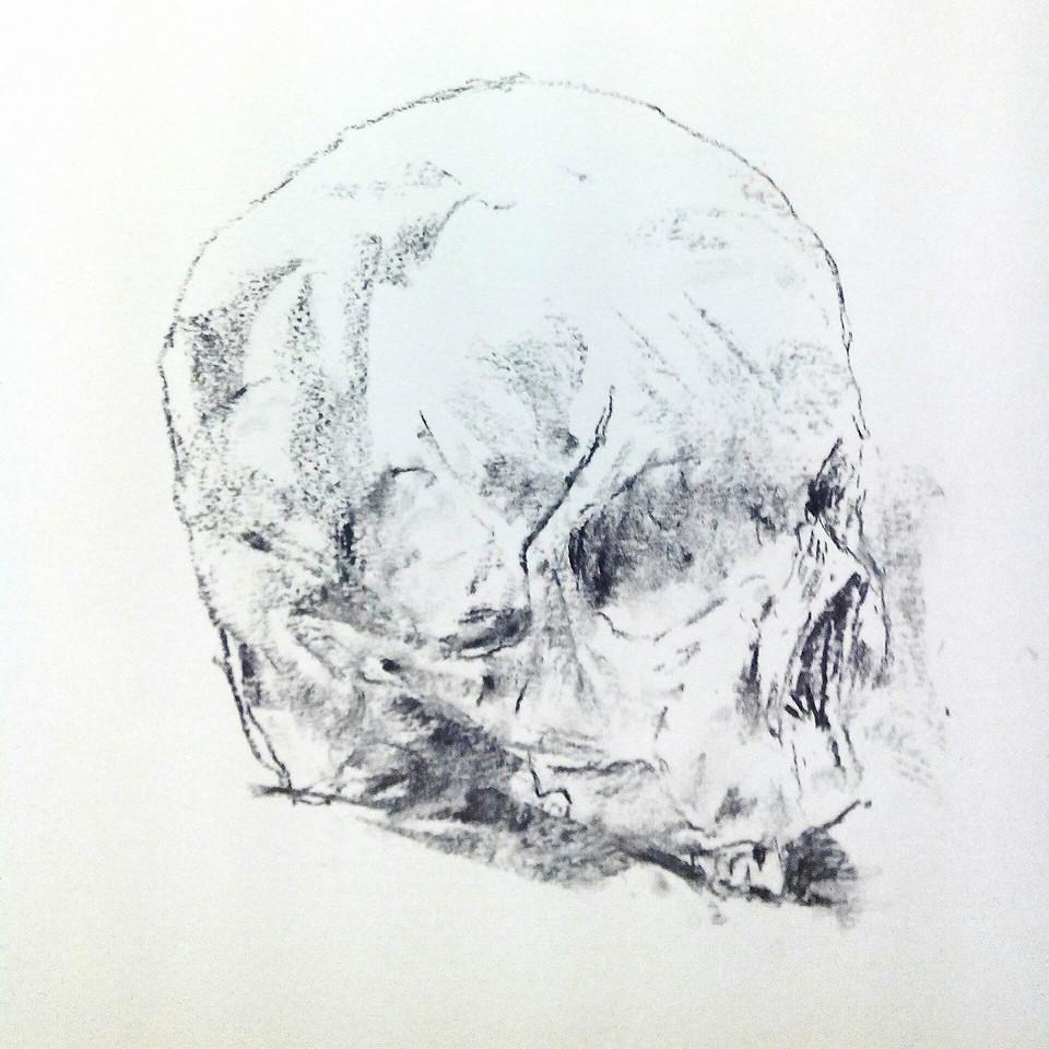 Leeza Hooper, Charchoal on paper, 2014, skull